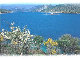 lesvos-island-greece-1