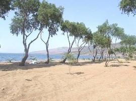 lesvos-island-greece-5
